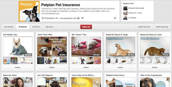 Petplan Insurance